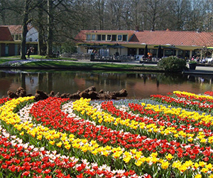 Keukenhof-excursions-for-groups-and-individual-customers-DMC-Amsterdam.jpg